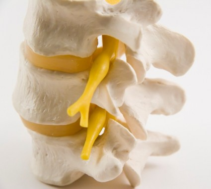 Sciatica - How we can help you… cover image